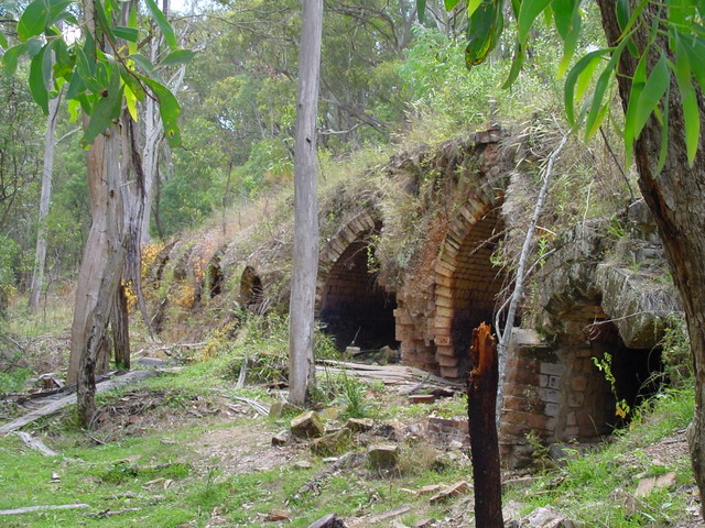 The ruined coke ovens at Newnes.jpg